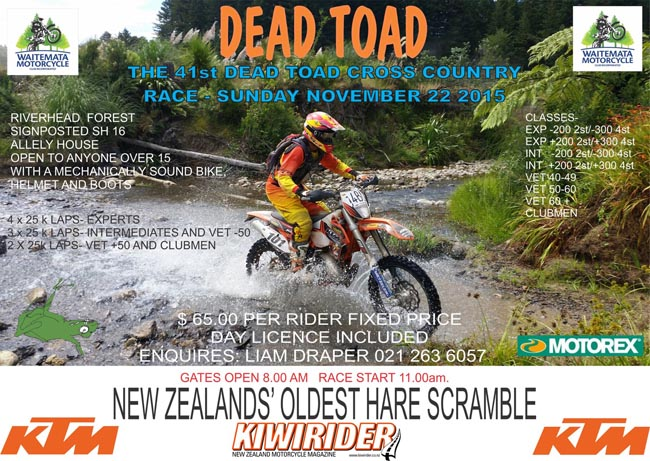 Poster-Dead Toad 2015-a